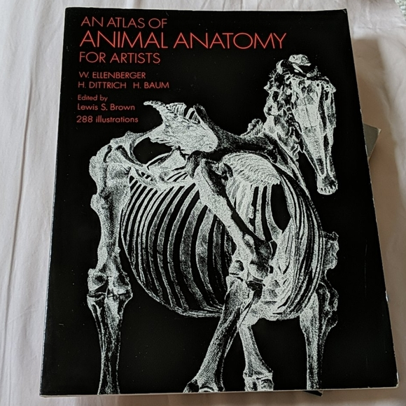 Other - An Atlas of Animal Anatomy for Artists